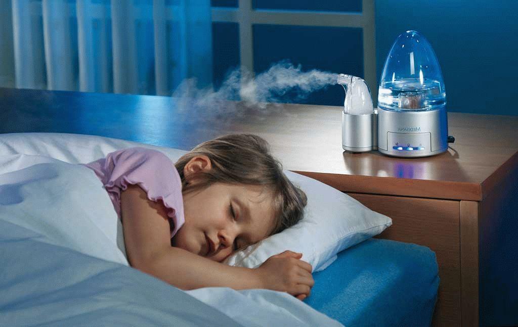 Как сделать воздух влажным в доме