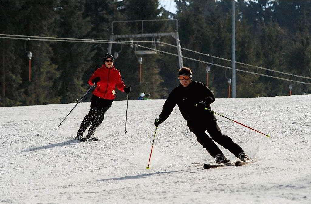 Топ-рейтинг лучших горных лыж для начинающих в 2021 году