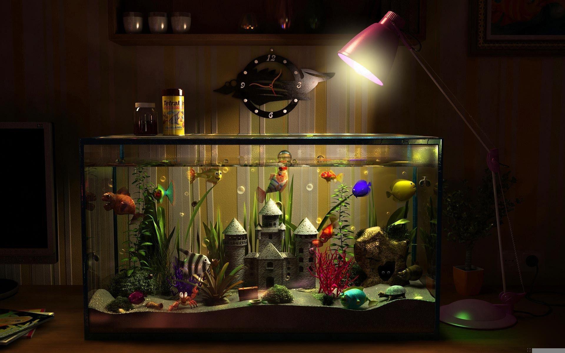 Лучшие аквариумные рыбки для новичка в 2020 году