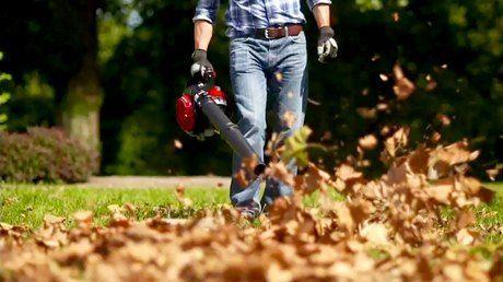 Рейтинг лучши садовых пылесосов и воздуходувок