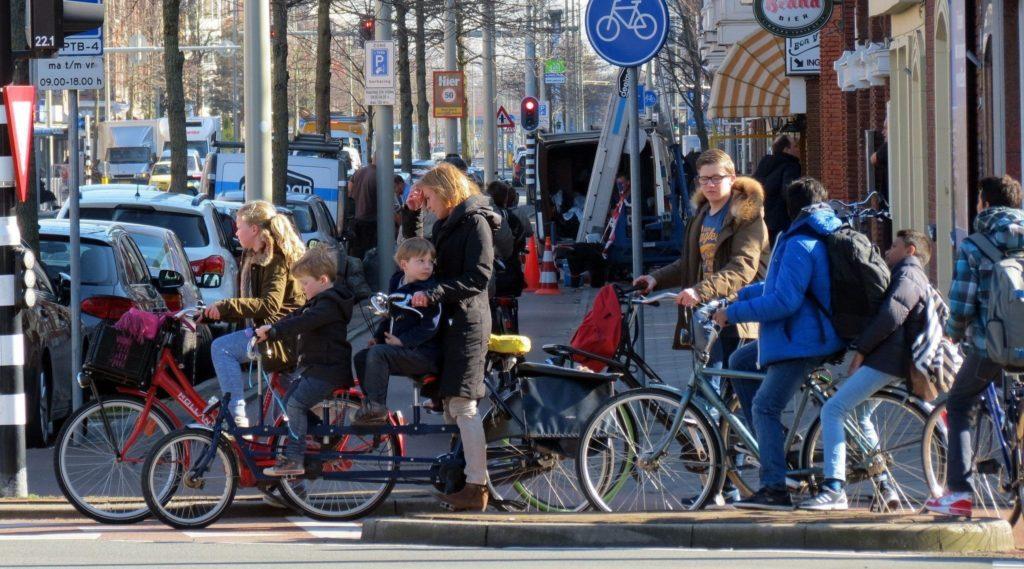 Рейтинг лучших детских велосипедных кресел в 2019 году