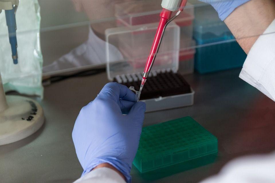 Анализы диеты по крови в екатеринбурге