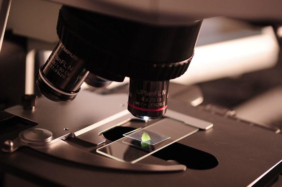 Лучшие медицинские лаборатории анализов Казани в 2020 году