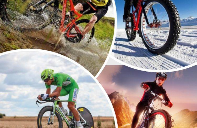 Как выбрать велопокрышку Лучшие покрышки для велосипеда в 2019 году