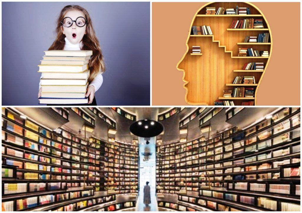 Как повысить эрудицию Лучшие книги для эрудитов