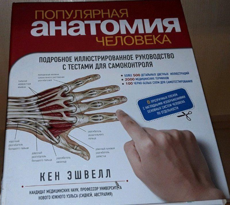 В каком классе анатомия человека
