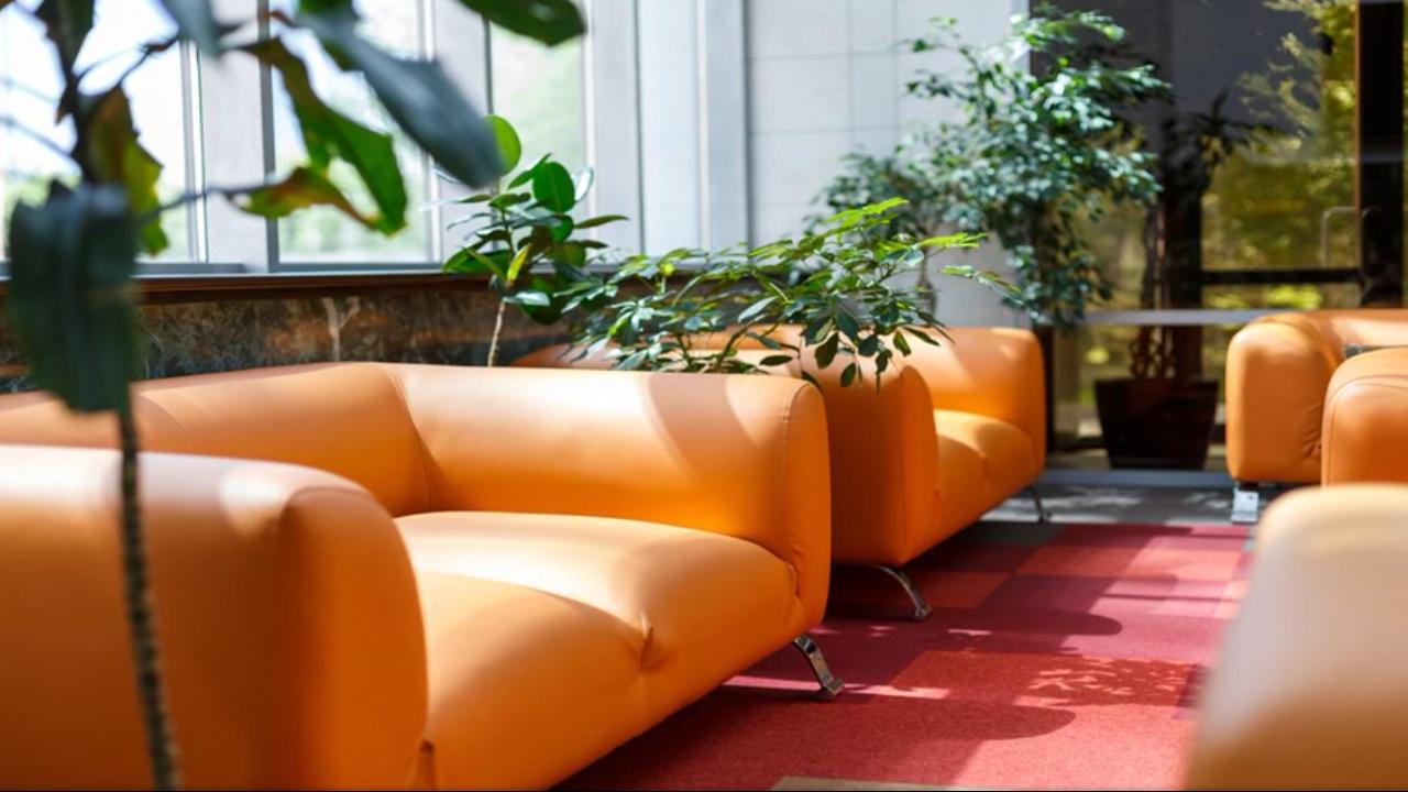 Рейтинг лучших и недорогих отелей и гостиниц Челябинска в 2020 году