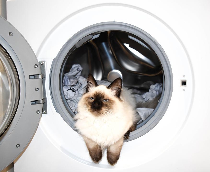 Лучшие встраиваемые стиральные машины на 2021 год