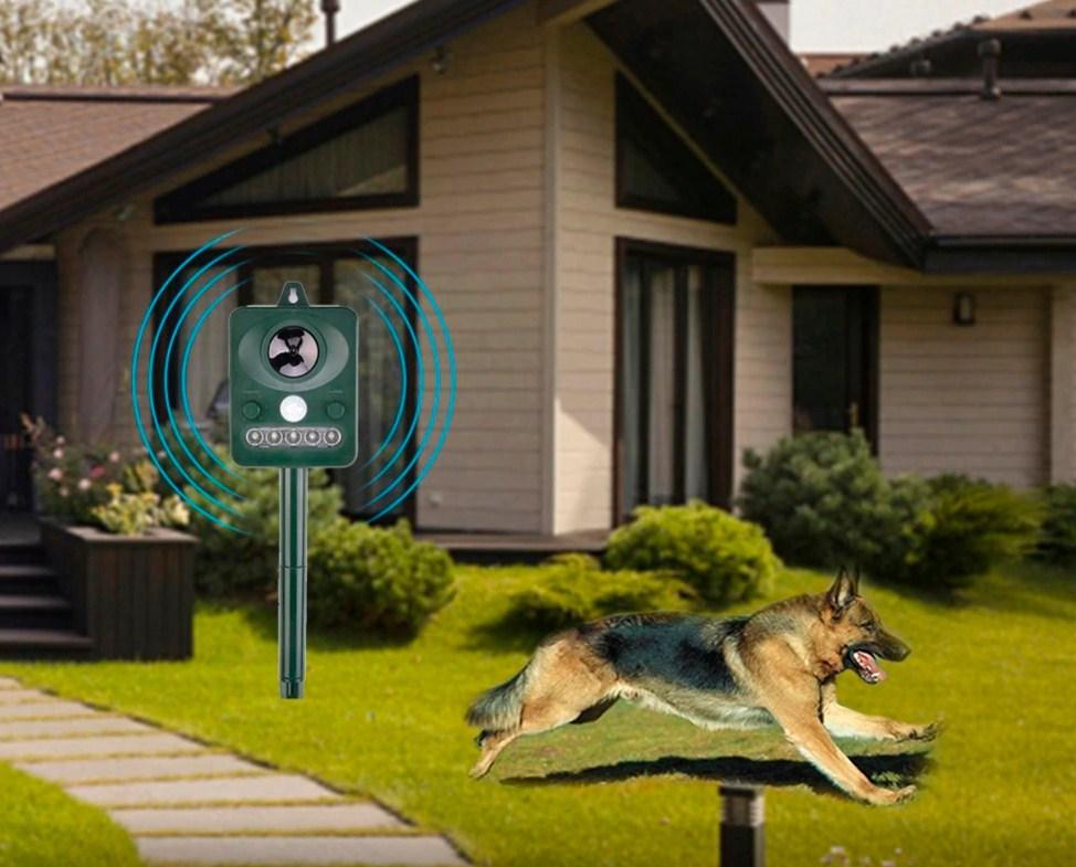 Рейтинг лучших отпугивателей собак на 2021 год