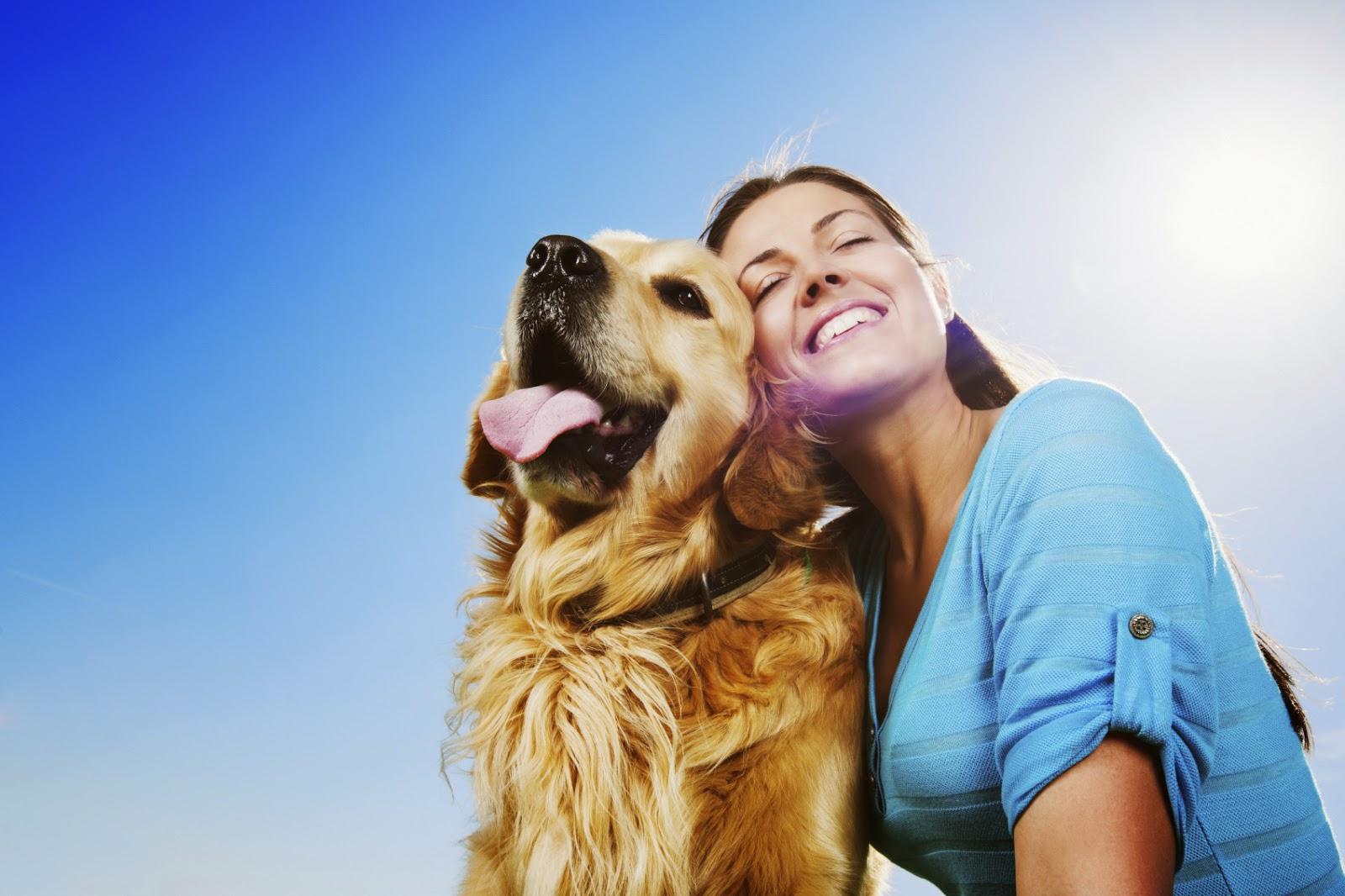 Рейтинг лучших питомников собак в Перми на 2020 год