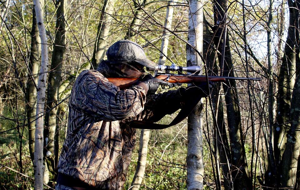 Рейтинг лучших пневматических винтовок для охоты без лицензии на 2020 год