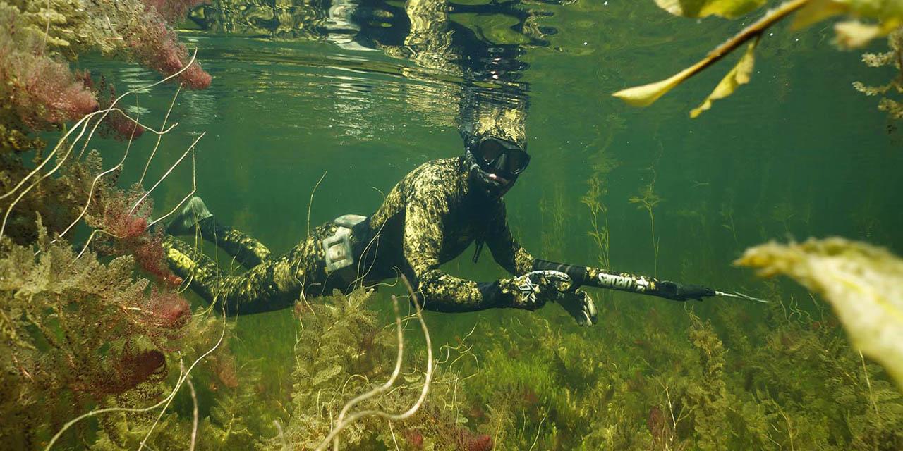 Рейтинг лучших катушек для подводной охоты на 2020 год
