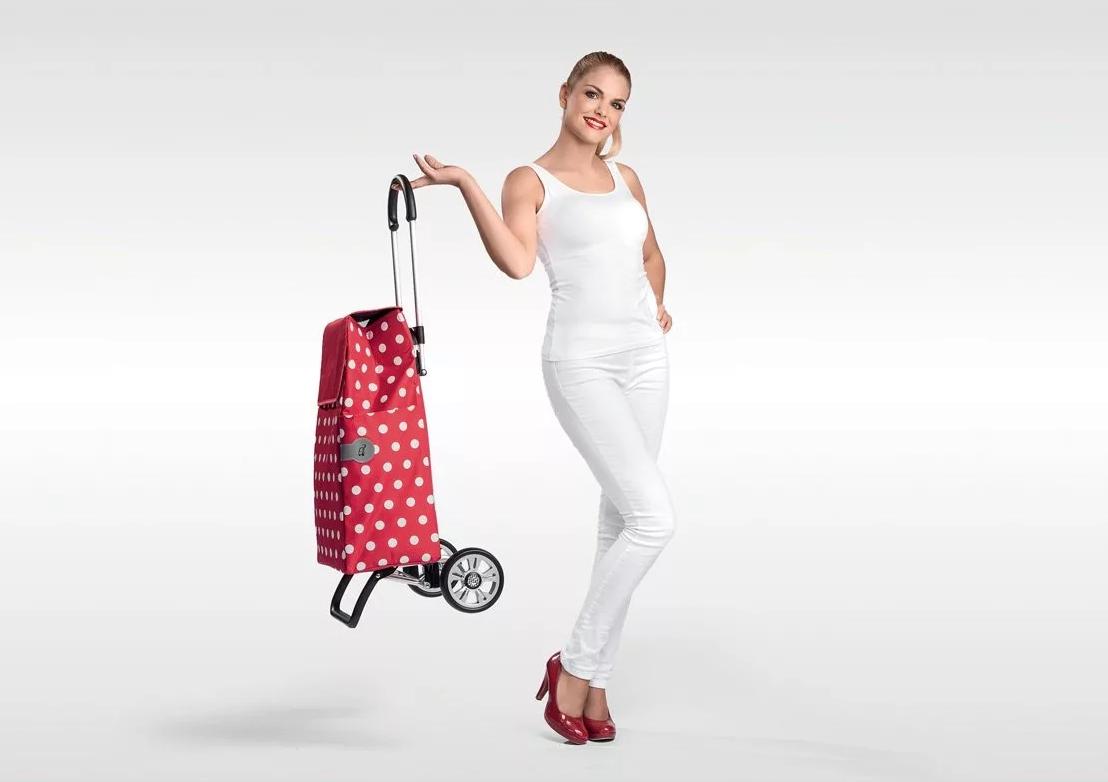 Лучшие хозяйственные сумки-тележки на колесах на 2020 год