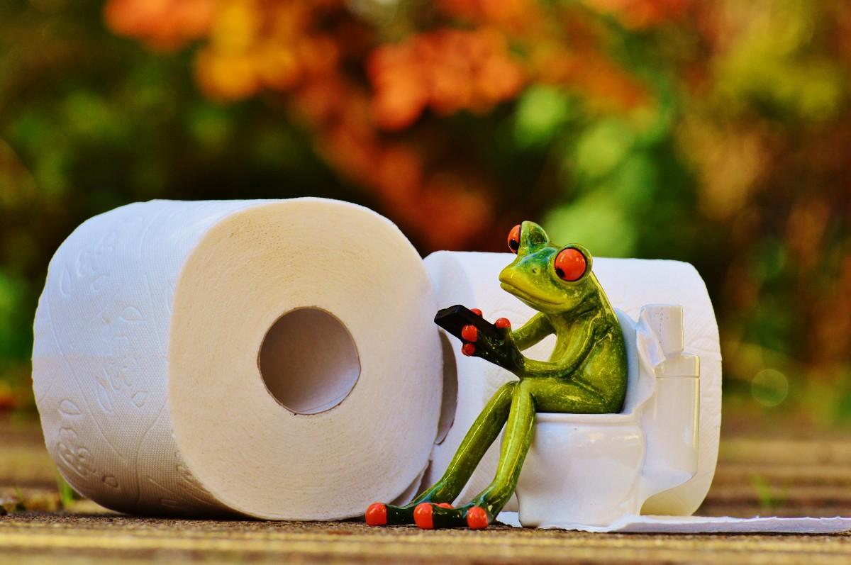 Рейтинг лучших туалетных бумаг на 2021 год