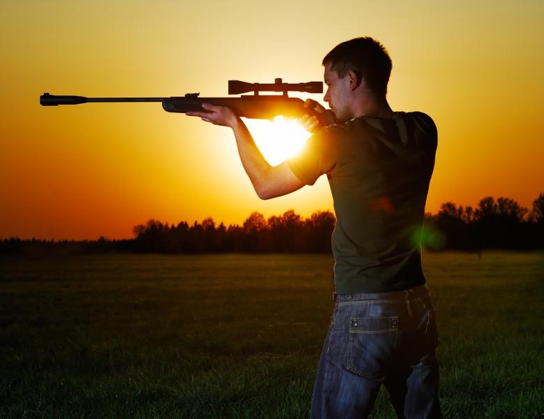 Рейтинг лучших пневматических винтовок для развлекательной стрельбы на 2020 год