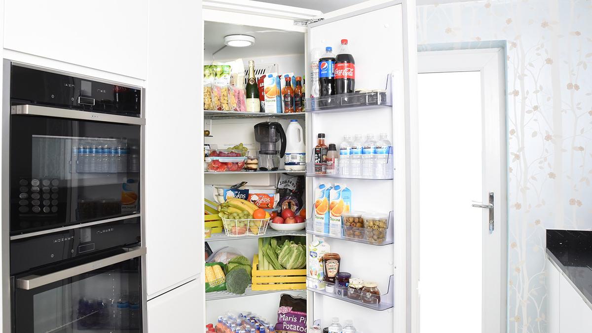 Рейтинг лучших поглотителей запаха для холодильника на 2020 год