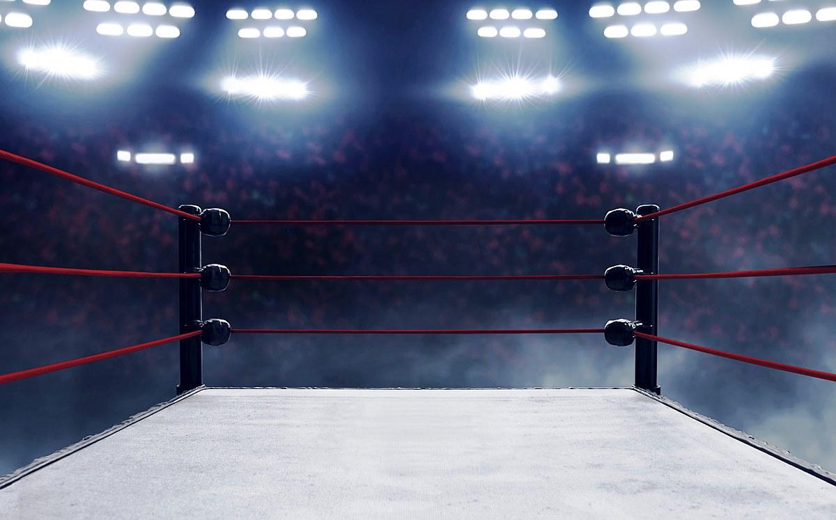 Рейтинг лучших боксерских рингов для спортзалов на 2020 год