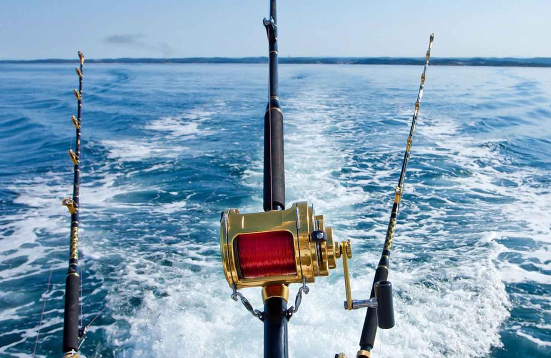 Рейтинг лучших интернет-магазинов рыболовных товаров на 2020 год