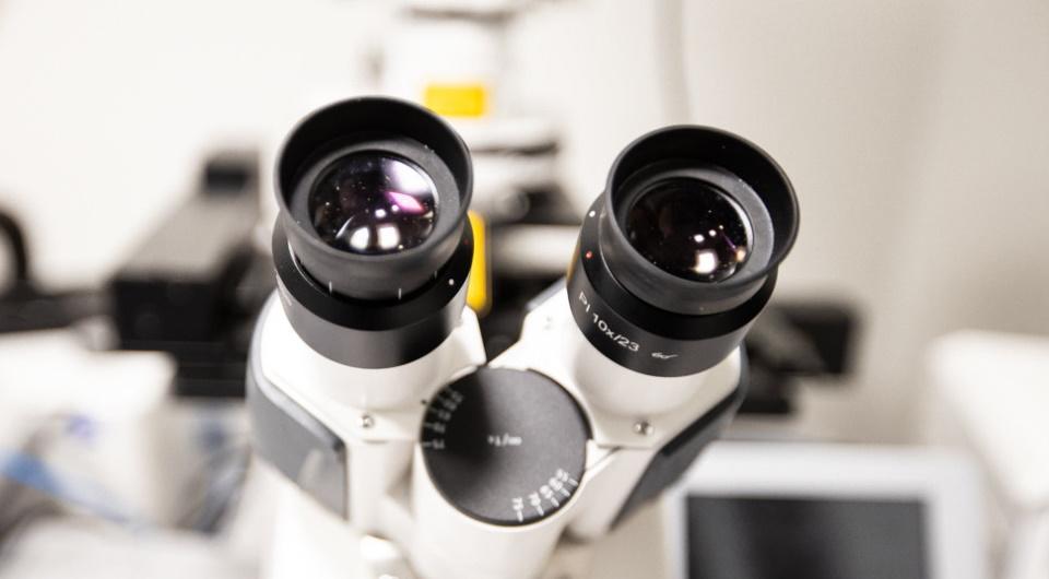 Рейтинг лучших стереомикроскопов на 2020 год