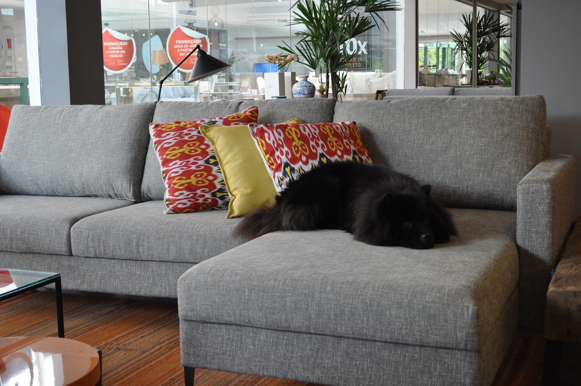Рейтинг лучших диванов для ежедневного сна на 2021 год