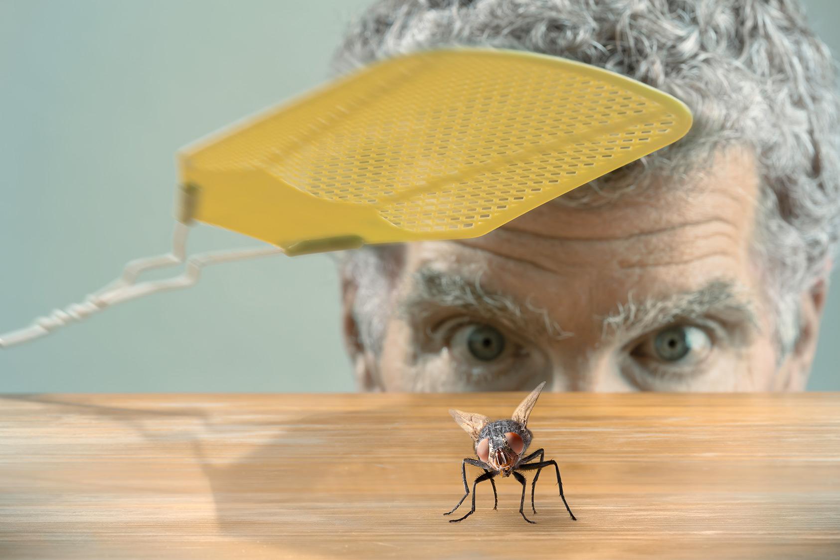Рейтинг лучших средств от мух на 2021 год