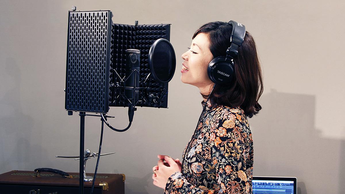 Рейтинг лучших акустических экранов для микрофона на 2021 год