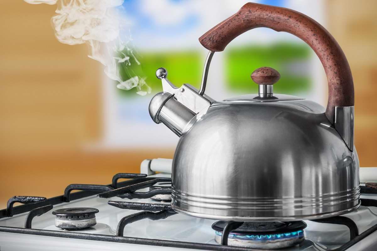 Рейтинг лучших чайников для плит на 2021 год